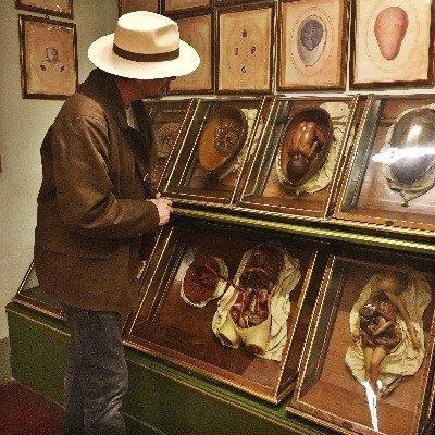 Weird La Specola Florence Italy Exhibits