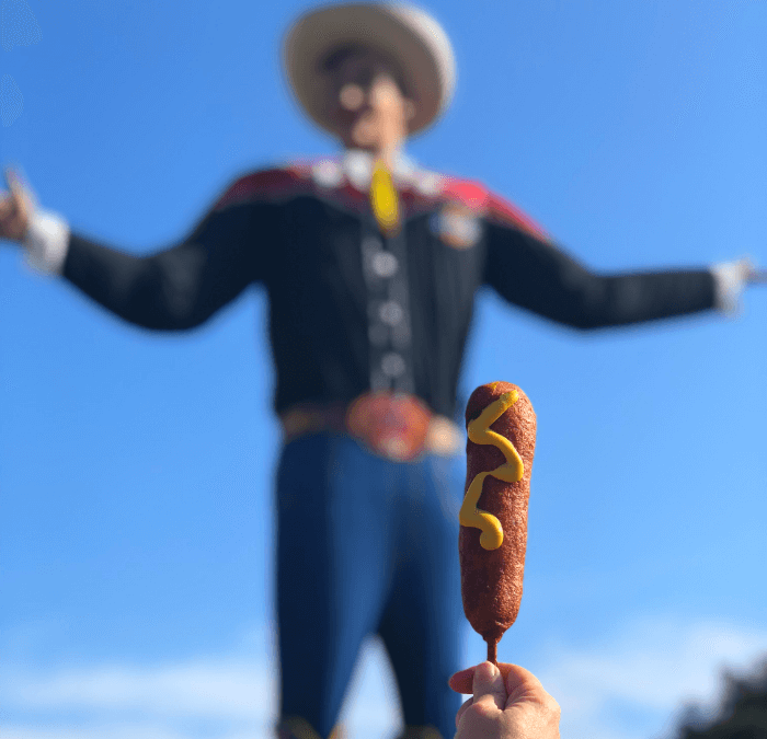 HOWDY FOLKS!  It's State Fair Time in Texas
