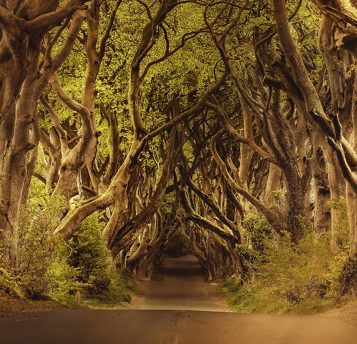 Game of Thrones Locations: Travel Bucket List